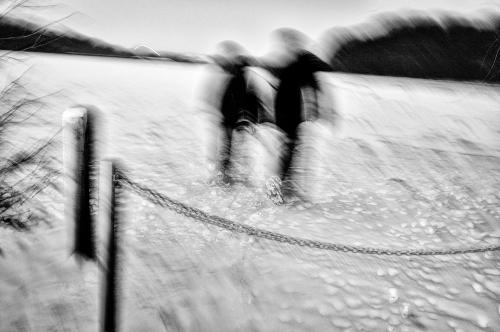 winter in Zillebeke